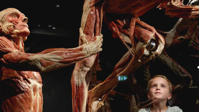 Slide 1 - BODY WORLDS Amsterdam